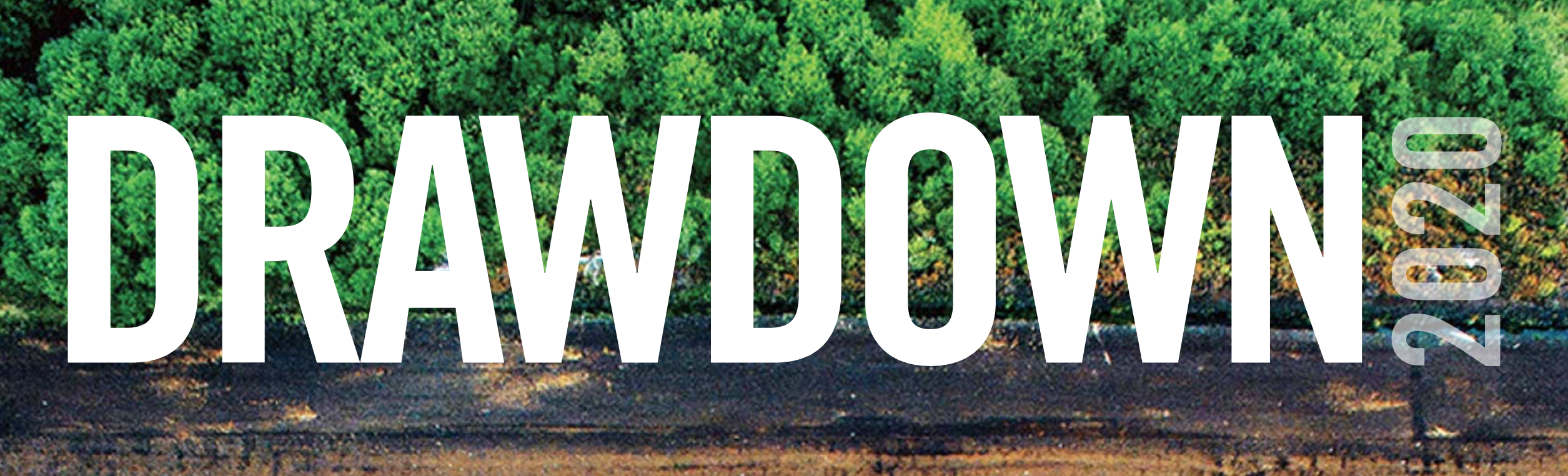 A lush green forest above a strip of dirt road, with the words DRAWDOWN 2020 in white overlaid on top of the image.