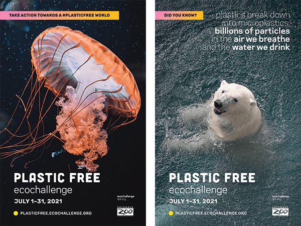 Two posters for Plastic Free Ecochallenge featuring a jellyfish and a polar bear